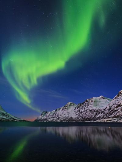 View of the Aurora Borealis, Northern Lights, Reflected in a Fjord in Norway-Babak Tafreshi-Photographic Print