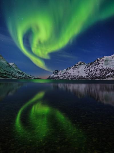View of the Aurora Borealis, Northern Lights, Reflected in a Fjord-Babak Tafreshi-Photographic Print