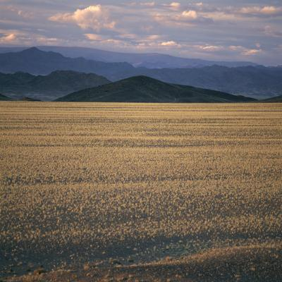 View of the Beginning of the Altai Range From the Gobi Desert-David Pluth-Photographic Print