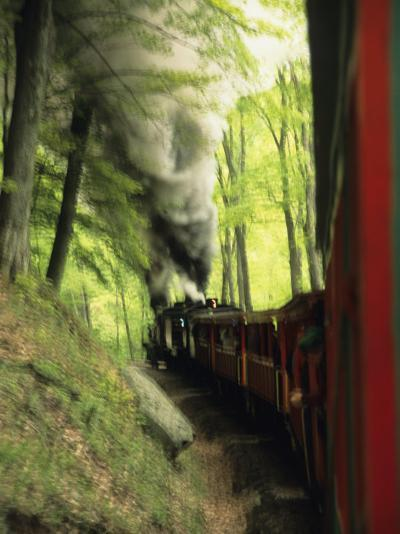 View of the Cass Scenic Railroad Train from the Caboose-Raymond Gehman-Photographic Print