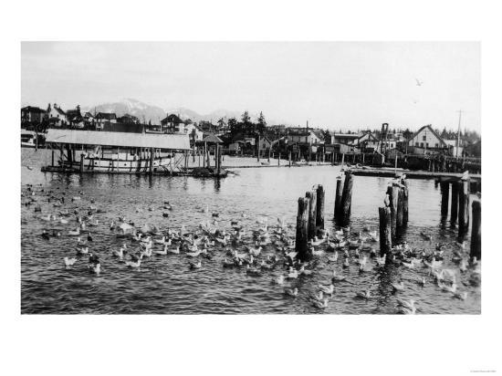 View of the Docks and Harbor - Petersburg, AK-Lantern Press-Art Print