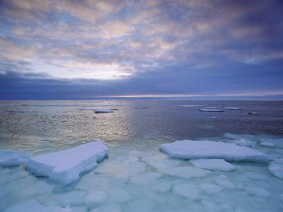 View of the Freshly Frozen Hudson Bay Coastline Dotted with Ice Floes-Norbert Rosing-Photographic Print