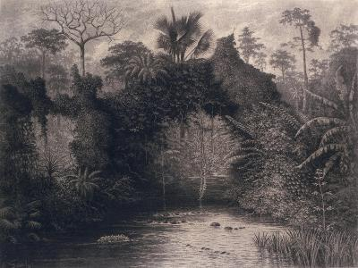 View of the Gulf of Biafra, West Africa, 1877-Emma Sandys-Giclee Print