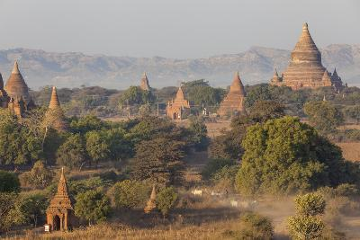 View of the Pagodas and Temples of the Ancient City of Bagan, Myanmar-Peter Adams-Photographic Print