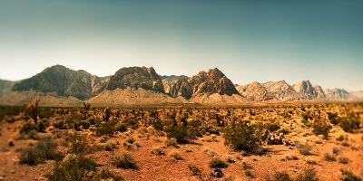 View of the Red Rock Canyon National Conservation Area, Near Las Vegas, Clark County, Nevada, USA--Photographic Print