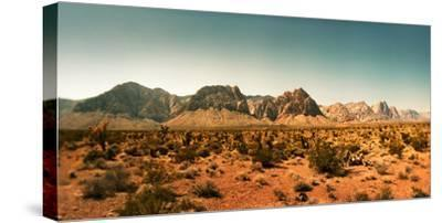 View of the Red Rock Canyon National Conservation Area, Near Las Vegas, Clark County, Nevada, USA