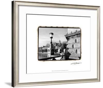 View of the Royal Palace, Budapest-Laura Denardo-Framed Premium Giclee Print