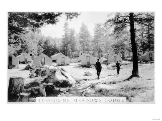 View of Tuolumne Meadows Lodge - Tuolumne, CA-Lantern Press-Art Print