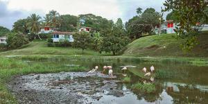 View of village and nature reserve, Las Terrazas, Candelaria, Artemisa Province, Cuba