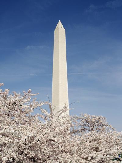 View of Washington Monument, Washington DC, USA-Michele Molinari-Photographic Print