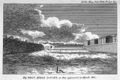 View of West India Docks, Poplar, London, 1802--Giclee Print