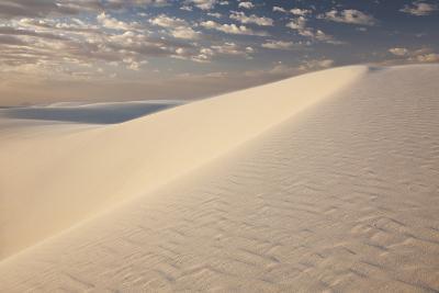 View of White Sand Dune at Sunrise in White Sands National Monument-Derek Von Briesen-Photographic Print