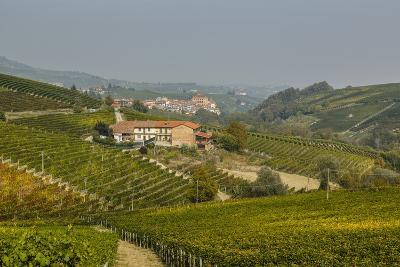 View over Barolo Village and Vineyards, Langhe, Cuneo District, Piedmont, Italy, Europe-Yadid Levy-Photographic Print