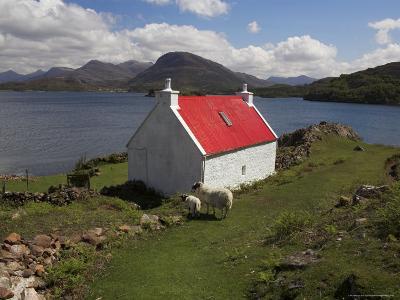 View Over Loch Torridon, Highlands, Scotland, United Kingdom-Steve & Ann Toon-Photographic Print