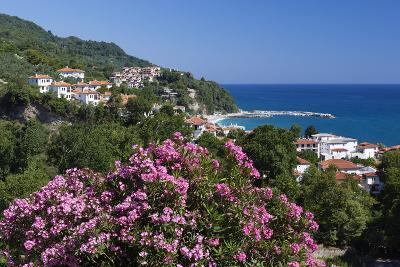 View over Resort, Agios Ioannis, Pelion Peninsula, Thessaly, Greece, Europe-Stuart Black-Photographic Print