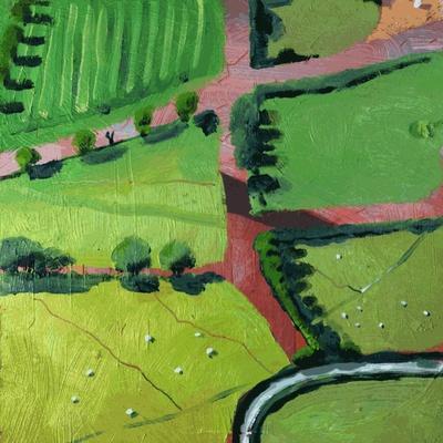 https://imgc.artprintimages.com/img/print/view-over-safron-walden-or-thaxted_u-l-q1bx5pv0.jpg?p=0