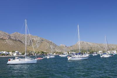 View over the Marina to Port De Pollenca, Pollenca, Majorca (Mallorca)-Markus Lange-Photographic Print