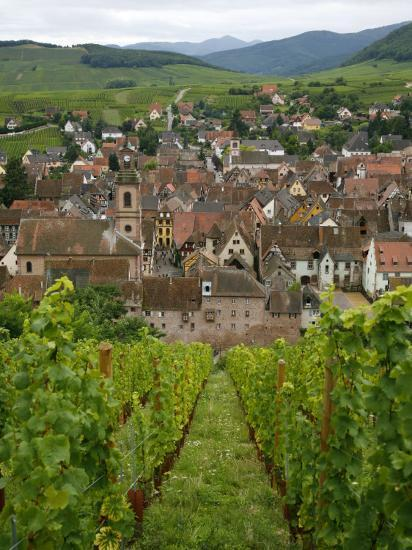 View over the Village of Riquewihr and Vineyards in the Wine Route Area, Alsace, France, Europe-Yadid Levy-Photographic Print