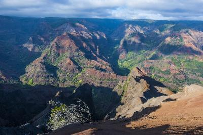 View over the Waimea Canyon, Kauai, Hawaii, United States of America, Pacific-Michael Runkel-Photographic Print