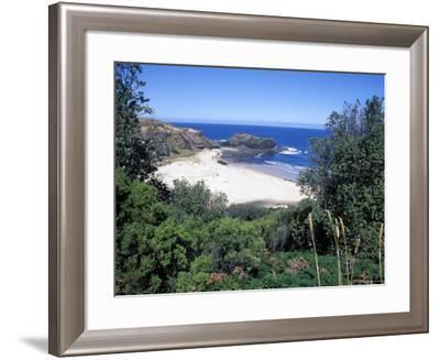 View Over Trees to Trbeach and Bushranger Bay, Mornington Peninsula, Victoria, Australia-Richard Nebesky-Framed Photographic Print