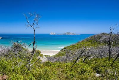View over Wilsons Promontory National Park, Victoria, Australia, Pacific-Michael Runkel-Photographic Print