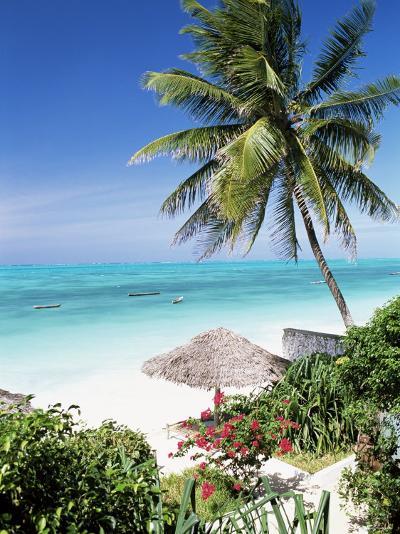 View Through Palm Trees Towards Beach and Indian Ocean, Jambiani, Island of Zanzibar, Tanzania-Lee Frost-Photographic Print