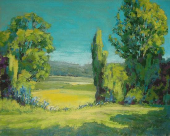view-through-the-trees-ii