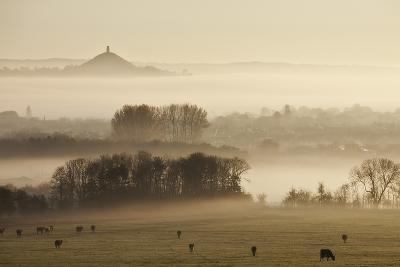 View Towards Glastonbury Tor from Walton Hill at Dawn, Somerset Levels, Somerset, England, UK-Guy Edwardes-Photographic Print