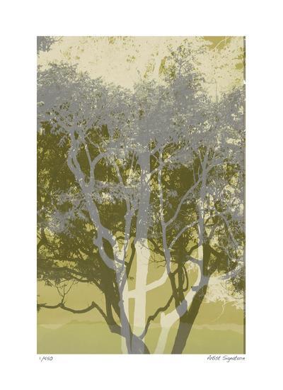 Views of Trees 3-Mj Lew-Giclee Print