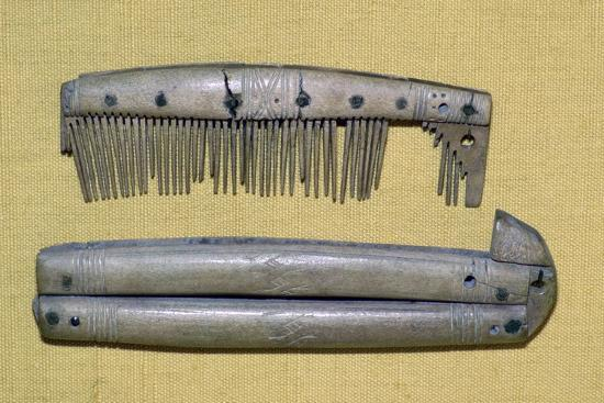 Viking period bone and ivory comb and case. Artist: Unknown-Unknown-Giclee Print