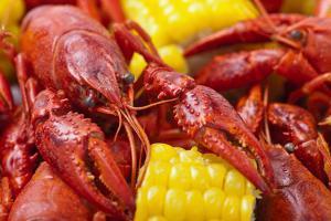 Crayfish Boil by -=Viktor=-