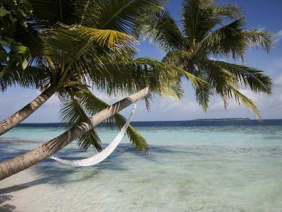 Vilamendhoo Island, Ari Atoll, Maldives, Indian Ocean-Angelo Cavalli-Photographic Print