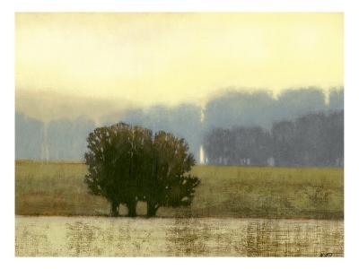 Villa Park I-Norman Wyatt Jr^-Art Print