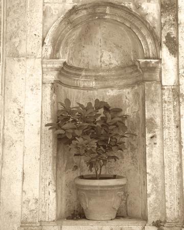 Villa Pienza I-Bill Philip-Giclee Print