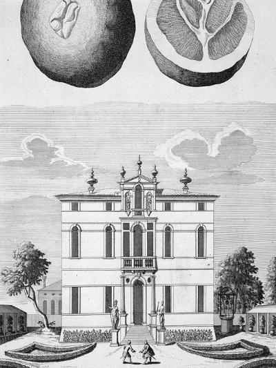 Villa Vendramin Cappello in Noventa Padovana--Giclee Print