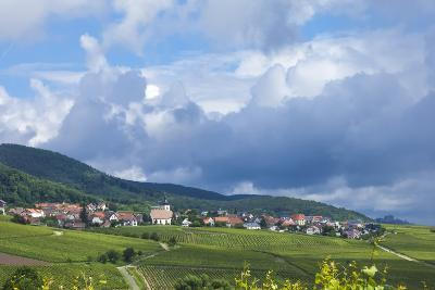 Village Amongst Vineyards in the Pfalz Area, Germany, Europe-James Emmerson-Photographic Print