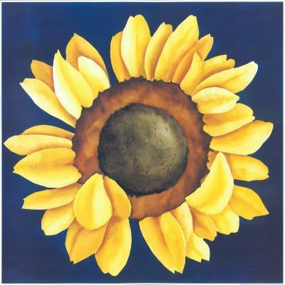 Huge Sunflower I