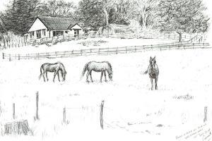 Horses at top of lane, 2008 by Vincent Alexander Booth