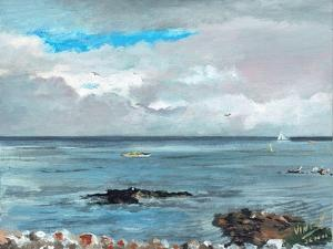 Howth Ireland, 2001 by Vincent Alexander Booth