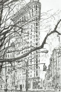 New York Flat Iron Building, 2003 by Vincent Alexander Booth