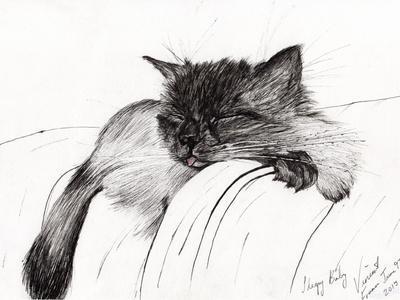 Sleepy Baby, 2013