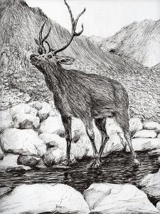 Stag, 2011 by Vincent Alexander Booth