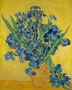 Irises, 1888 by Vincent Gogh