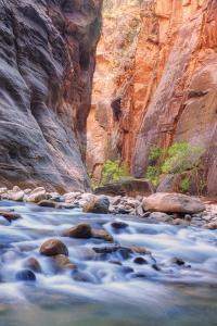 A Narrows View, Zion by Vincent James