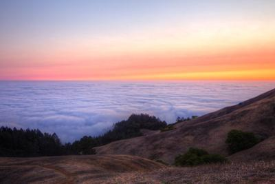 Above the Fog Line at Sunset, Mount Tamalpais, Marin County by Vincent James