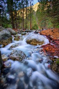 After The Fire, Water Flow From Horsetail Falls, Yosemite Valley by Vincent James