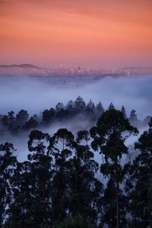 Alt Views Epic Fog Bau Area Hills San Francisco Skyline Morning Light by Vincent James