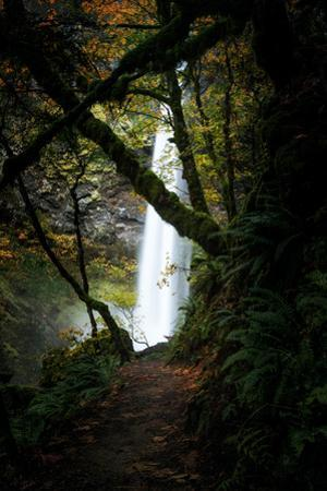 Approaching Elowah Columbia River Gorge Waterfall Pacific Northwest by Vincent James