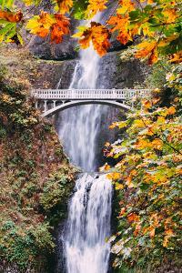 Autumn at Multnomah Falls, Portrait, Hood River, Columbia River Gorge, Oregon by Vincent James