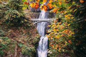 Autumn at Multnomah Falls Wide, Hood River, Columbia River Gorge, Oregon by Vincent James